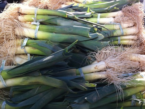 blog-leeks1