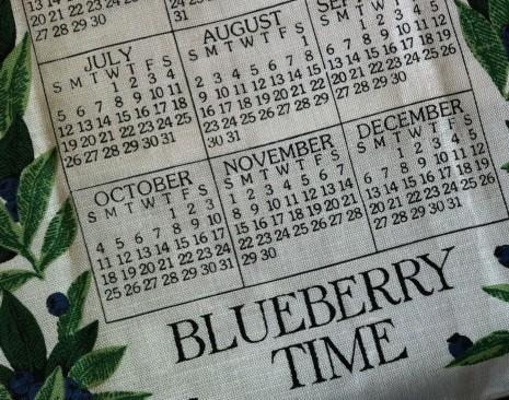 blog-blueberries2