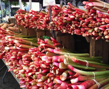 blog-rhubarb