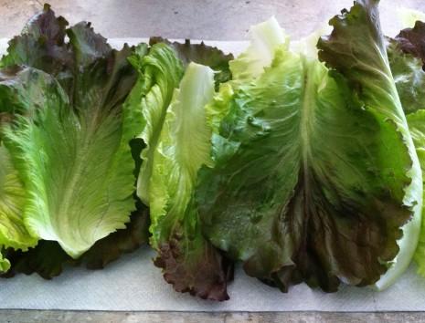 blog-lettuce prep