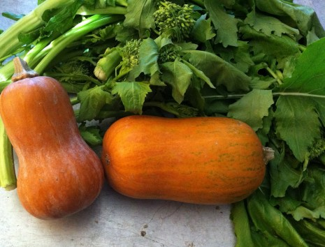 blog-butternut and broccoli rabe
