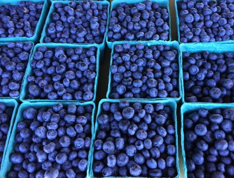 blog-blueberries