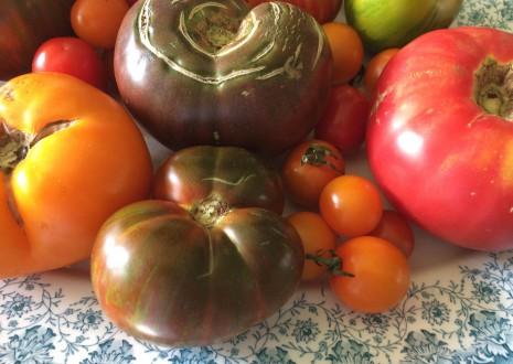 blog-fresh tomato sauce1