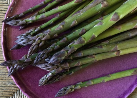 blog-asparagus2015-2