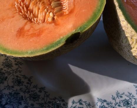 blog-melon
