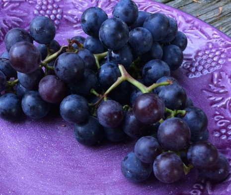 blog-grapes3